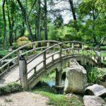 Piękny ,a także estetyczny ogród to zasługa wielu godzin spędzonych  w jego zaciszu podczas pielegnacji.